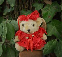 Betsy Has Her Portrait Done (BKHagar *Kim*) Tags: bkhagar bear teddybear teddy betsy toy animal southern red lace frilly portrait htbt
