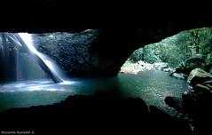 Natural Bridge (riccardo.donzelli) Tags: australia backpacking travel backpackers roadtrip landscape cavern grotto waterfall grotta caverna cascata queensland