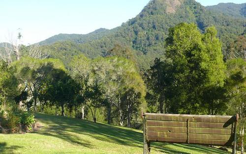 426 Mt Coxcombe Road, Upper Lansdowne NSW 2430