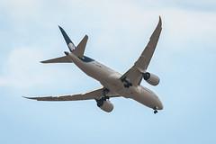 AeroMexico, B788 (MEX)