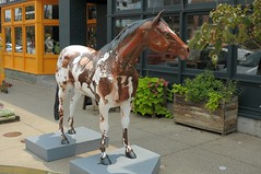 MB1_8656a (Marked_man) Tags: life city urban sculpture horse streetart art beautiful beauty statue artistic kentucky ky culture louisville gallopolooza