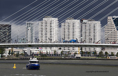 "Rotterdam • <a style=""font-size:0.8em;"" href=""http://www.flickr.com/photos/45090765@N05/21005700979/"" target=""_blank"">View on Flickr</a>"