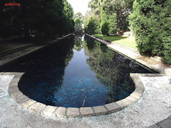 Pool of Reflection (pat.bluey) Tags: reflection gardens australia auburn newsouthwales 1001nights japenese poolofreflection bej flickraward spiritofphotography 1001nightsmagiccity