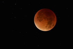 The Moon Runs Red (Jchales.co.uk) Tags: red moon colour night canon prime eclipse blood nightime 7d astronomy lunar catchy bloodmoon 200mm 2015