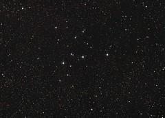 M39 - Open cluster in Cygnus (HDRyX) Tags: nikon open tunisia tunis cluster astro astrophotography astronomy tunisie astrophoto astronomie cygnus skywatcher pixinsight neq32