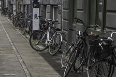 ...streets of Copenhagen (Ramesh_Thadani) Tags: copenhagen denmark bicicleta dk cph dänemark kopenhagen fahrrad bicicletas copenhaga dinamarca københavn bycicles bycicle fahrräder kobenhavn copenhague solvgade capitalregionofdenmark