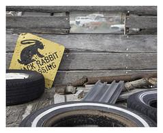 'Jack Rabbit' (J.e.r.e.m.y. S.i.l.v.e.r.) Tags: road trip arizona usa cars abandoned sign junk roadtrip derelict hackberry