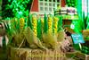 FAZENDINHA DO TULIO 2015 FINAL-30 (agencia2erres) Tags: aniversario 1 infantil festa ano fazenda fazendinha