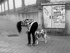 Owners look like their dogs (Dalmatian Style) (Arrtez la Musique) Tags: madrid espaa dog rayas girl blackwhite spain style can perro zebra estilo dalmatian owner ragazza canne cebra dalmata dlmata manchas duea