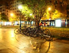 Bicicletas en el Boulevard (M C VICARIO) Tags: street bike bicycle night