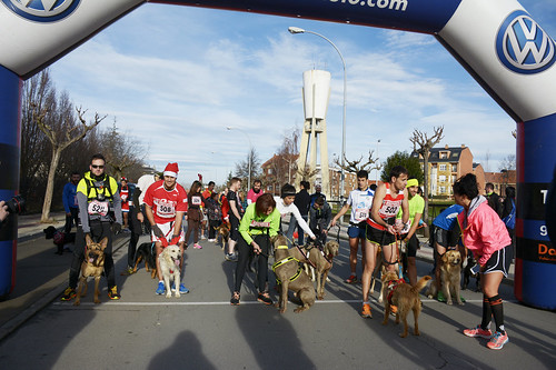 "Canina popular San Silvestre 2015 La Virgen del Camino • <a style=""font-size:0.8em;"" href=""http://www.flickr.com/photos/66442093@N08/23394756154/"" target=""_blank"">View on Flickr</a>"