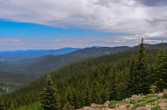 Landscape 3 (joshuaXconlee) Tags: mountain nature forest colorado mtevans
