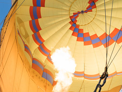 CBR-Ballooning-110158.jpg (mezuni) Tags: aviation australia hobby transportation hotairballoon canberra hobbies activity ballooning act activities passtime oceania australiancapitalterritory balloonaloftcbr