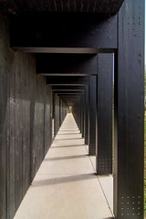 _DSC6724 (durr-architect) Tags: info centre zwin heartland belgium architecture cousse goris nature park wood structure border aday16 group area green trees