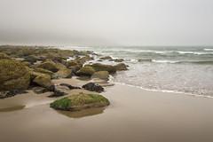 Sea mist at Cayton bay (Keartona) Tags: caytonbay beach mist misty morning rocks shore sea coast warm hues sand england northyorkshire scarborough natural nature landscape seascape