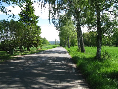 The road between Axvall and Varnhem 2010