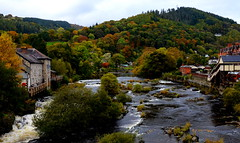 A Welsh October (Peter.S.Roberts) Tags: interestingness interesting nature llangollen wales welsh riverdee arfon arfondyfrdwy river october autumn landscape riverscene trees forest colours autumnal scenic town bridge flowingwater countryside vegitation cold mountain houses buildings railway station bushes historic rappids view beauty beautiful calm peaceful relaxing motion movement whitewater flowing stcollen natural wild untamed free foliage green season peterroberts nikond7000 woods trains rocks depthoffied pov