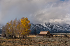 Seasons changing at the Moulton Barn (Jeff Bernhard) Tags: t a moulton barn grand teton national park gtnp tetons snow fall
