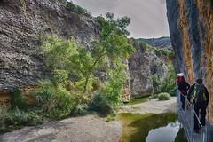 Pasarela sobre el ro Vero (Alquzar - Huesca - Espaa) (Carlos M. M.) Tags: aragn huesca pirineos canon100d hdr rio river excursin hiking