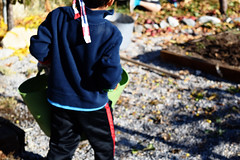 Alejandro Carrying Apples