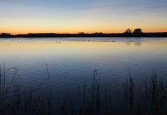 Lake (Elisa1880) Tags: landgoed ockenburgh den haag the hague netherlands nederland lake meer