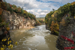 Letchworth State PArk (Christy Hibsch ( Christy's Creations on Facebook )) Tags: letchworthstatepark park state ny wny autumn fall genesee river gorge