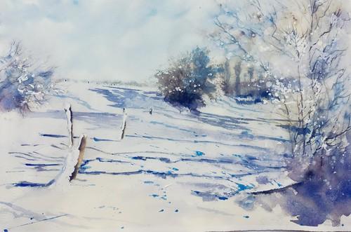 Première neige en Hesbaye Belge