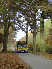 anglianbus 959 - AU08GLY (Zak (Norwich Bus Page)) Tags: anglianbus optarem950slsolo au08gly 959 routeab84 2016