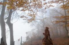 20161030-WOL_7716.jpg (viennalinux) Tags: spaziergang nebel herbst nature tauern fog natur ossiach ossiacher