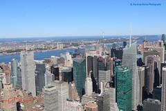 NYC - View of the West Side from the Empire State (ssspnnn) Tags: newyork nyc edificios edificio skyscraper rascacielo arranhaceu spnunes nunes snunes spereiranunes canoneos70d bigapple manzana grandemaca novayork nuevayork eua