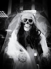 Halloween. (SkipperWP) Tags: halloween galway ireland bride veil skele skeleton skull bw blackwhite blackandwhite monochrome artistic creativity creative horror fuji fujifilm xe2 xf1855