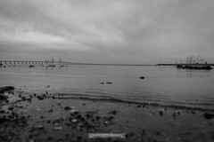 DSC00183 (grahedphotography) Tags: resundsbron resund oresund sweden swe denmark a7ii a7mk2 nature natur water ocean hav bridge beach blackandwhite grey malm limhamn
