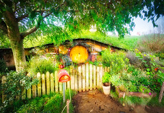 Beautiful Hobbit Holes (Stuck in Customs) Tags: newzealand northisland stuckincustomscom treyratcliff treyratcliffcom hobbiton matamata waikato nz ratcliff trey horizontal houses hobbit lordoftherings lotr pub greendragoninn inn colour color outside outdoor outdoors mirror reflection lake pond water light glowing underground trees blue purple white black orange green yellow hills rolling rr dailyphoto sony ilce7r may 2016 p2016 home garden flower plant flowerbed ilce7rm2 serene