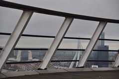 In de hoogte (Ilona67) Tags: rotterdam hek hoogte euromast hff buiten uitzicht erasmusbrug