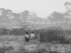 Walking home (prondis_in_kenya) Tags: kenya nairobi shortrains pedestrian shrubbery bush bw