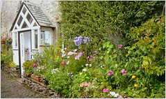 """A sunny day in August (""""KatyCollins""""2504) Tags: kirkby lonsdale flowers cottage"""