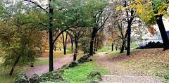 Milano - Parco Sempione (pattyconsumilano) Tags: milano milan parcosempione coloriautunnali autumn