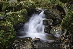 Sedas en el rio Corroriu-Quiros (mercenario.one) Tags: corroriu molino naturaleza otoo raw seda sedao