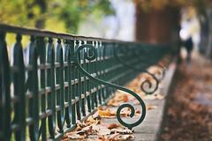 domingo otoal (idlphoto) Tags: autumn otoo irua pamplona hojas leaves banco parque silueta silhouette canon canon70200f4lis idlphoto