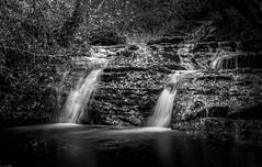 The lengths we go to. (Ian Emerson) Tags: waterfall water river rocks moss leaves wales talgarth trees autumnal november blackwhite hoya ndx400 outdoor landscape