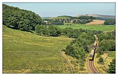 Summer Loving (david.hayes77) Tags: derbyshire highpeak buxton brierlowbar harpurhill 2016 freight aggregate stone shed freightliner class66 66621 buxtonquarry 6h22 summer cromfordandhighpeakrailway chpr