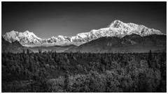 Denali National Park Alaska (Bryan the Roving Vagabond) Tags: autumn blackandwhite bw mountain monochrome field landscape photo day outdoor border clear mount hunter denali could denalinationalpark foraker