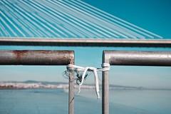 Unir pontes (Pedro Alves Rosa) Tags: pontevascodagama laos parquedasnacoes riotejo unir varo