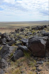 30095315 (wolfgangkaehler) Tags: old animals rock asian ancient asia desert deer mongolia anima centralasia petroglyph gobi blackmountains petroglyphs mongolian gobidesert southernmongolia