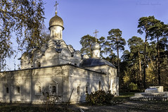 Temple of Archangel Michael (Lyutik966) Tags: roof building tree church window nature grave architecture temple michael cross dome orthodox archangel arkhangelskoye