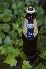 Bravoro Pinta - Vofas-Engelman (y.mihov, Big Thanks for more than a million views) Tags: green beer glass garden bottle pint pinta bierbirrbeerehpivogaragardoapivabeerbierbiracervesajijpijiulbeer alebieroluolut cervisiaalusbbiyabirbiyar jadabjobiapiwocervejasirbisacervezabeerabiiru bravoro vofasengelman