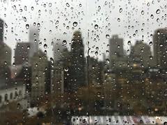 Pearl from the sky (Bhargav Kesavan) Tags: newyorkcity rain photography bankofamerica empirestatebuilding bryantpark hbo raindrop drizzle 42ndstreet iphone rainshower gracebuilding aveoftheamericas homeboxoffice bhargavkesavan