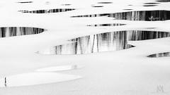 winter's mirrors (marianna armata) Tags: winter blackandwhite lake snow canada abstract reflection tree ice nature water monochrome lumix frozen blackwhite pond quebec g1 p1110691