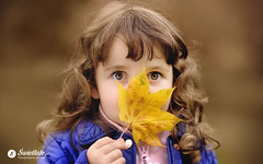 swietliste-fotografujemy-emocje-fotografia-rodzinna-Bydgoszcz-portret-jesien-lisc
