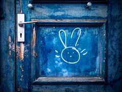274/366 2016 - White Rabbit (fishyfish_arcade) Tags: 20mmf17 gx7 lumix panasonic panasonic20mmf17asphlumixg door blue rabbit whiterabbit graffiti doorhandle texture paint bluestblue blueandbright